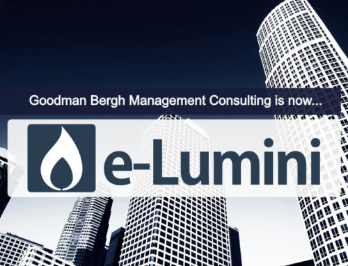 From Goodman Bergh to e-Lumini Organisation Design Agency