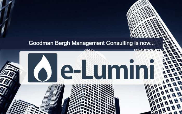 Goodman Bergh Management Consultants are now e-Lumini Organisation Design Agency